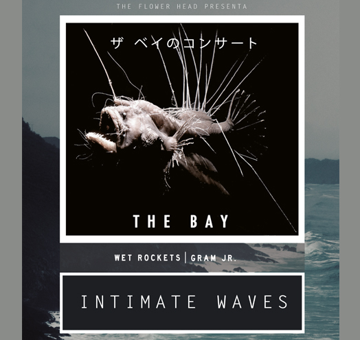 INTIMATE WAVES