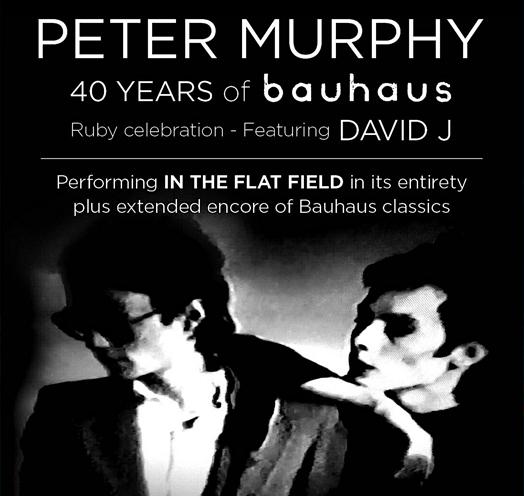 PETER MURPHY AND DAVID J - 40 AÑOS DE BAUHAUS: IN THE FLAT FIELD